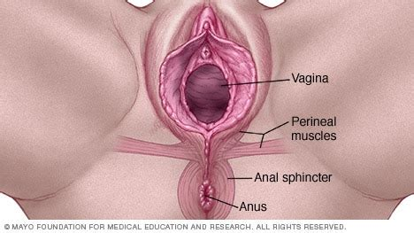Post menopause, irritationsoreness just inside vaginal jpg 468x263